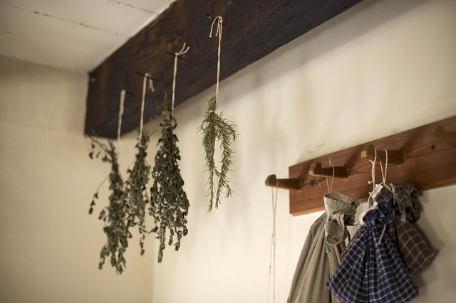 drying bunches of herbs