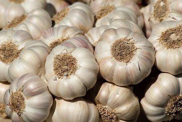 How to Preserve Garlic – 4 Storage Methods