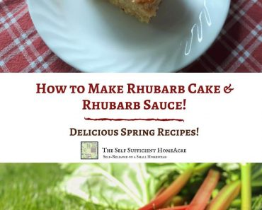 How to Make Rhubarb Cake and Rhubarb Sauce
