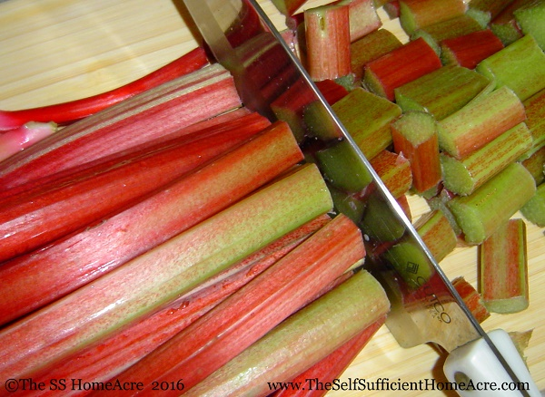 Rhubarb Cake - The Self Sufficient HomeAcre