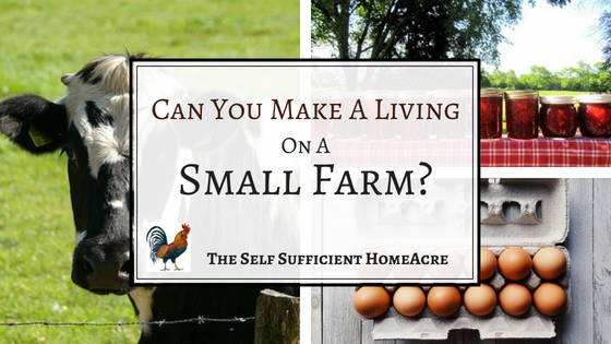 can you make a living on a small farm