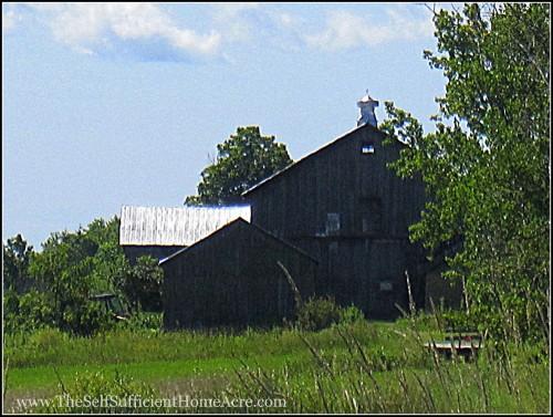 Homestead Buildings - My Grandparents' barn