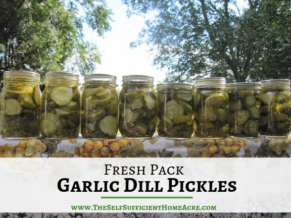 Fresh Pack Garlic Dill Pickles - The Self Sufficient HomeAcre