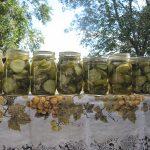 Garlic Dill Pickles