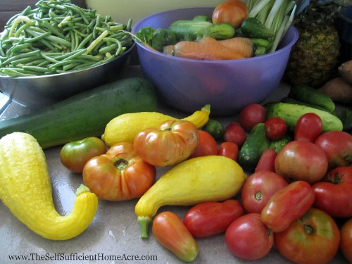 Warm weather veggies from our garden.