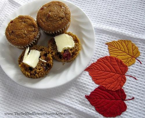 Pumpkin Cranberry Muffin Recipe