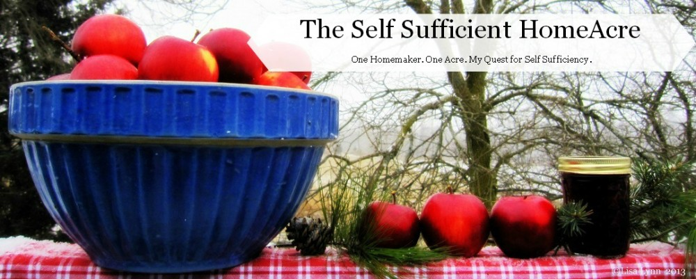The Self Sufficient HomeAcre