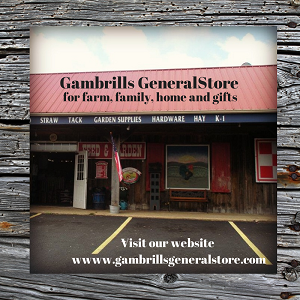 Gambrills General Store