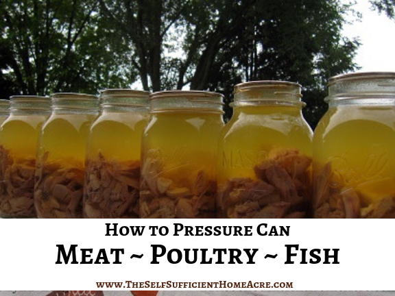 How to Pressure Can Meat, Poultry, and Fish - The Self Sufficient HomeAcre