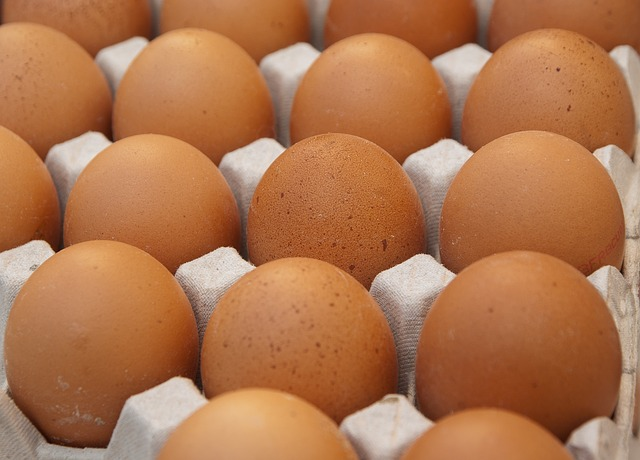 How to Feed Your Hens for Best Egg Production