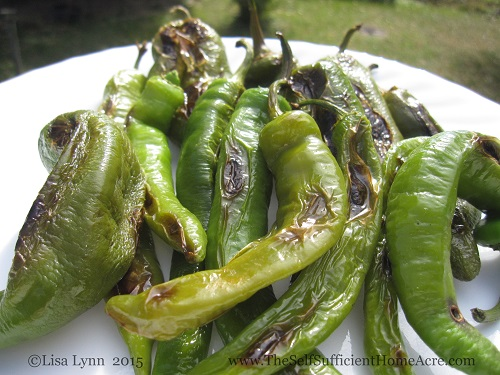 Roasting Green Peppers On The Woodstove