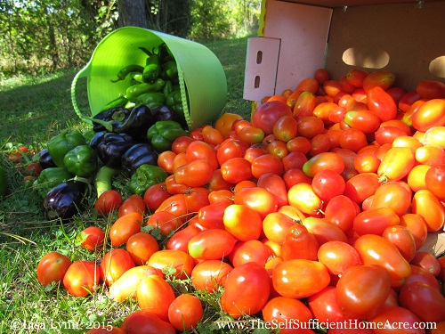 The End of Our Summer Veggies