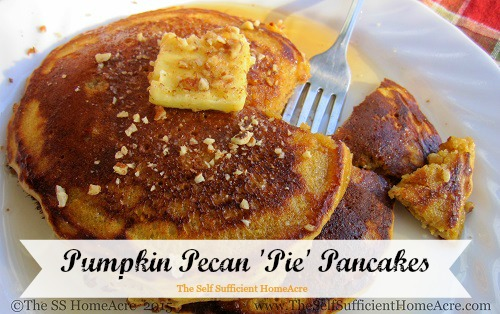 Pumpkin-Pecan 'Pie' Pancakes