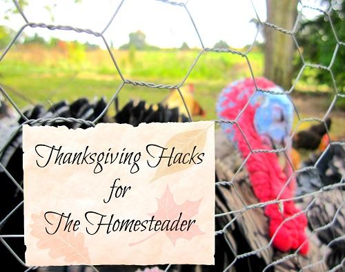 Thanksgiving Hacks for The Homesteader