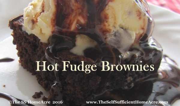 Hot Fudge Brownies