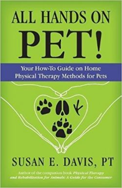 All Hands On Pet! Your How-To Guide on Home Physical Therapy Methods for Pets