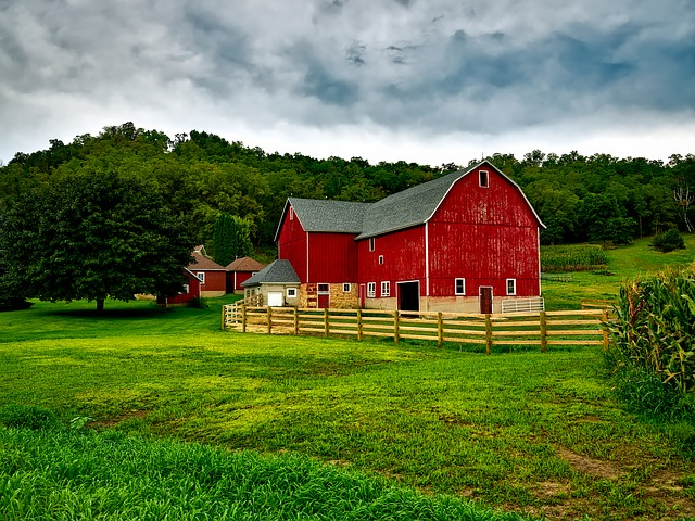 Homesteading, Farming, Livestock & Pets - The Self Sufficient HomeAcre