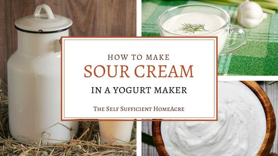 How to Make Sour Cream in a Yogurt Maker