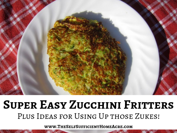 Zucchini Fritters - Super Easy Recipe