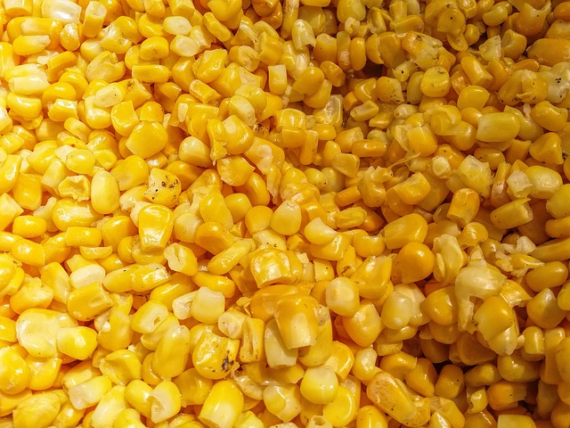 Freeze Dried Sweet Corn Product Review
