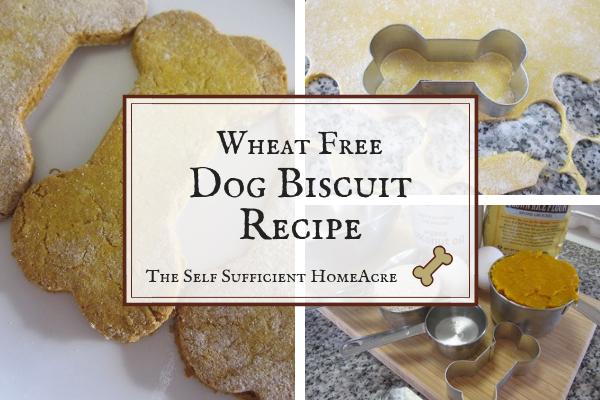 Wheat Free Dog Biscuit Recipe