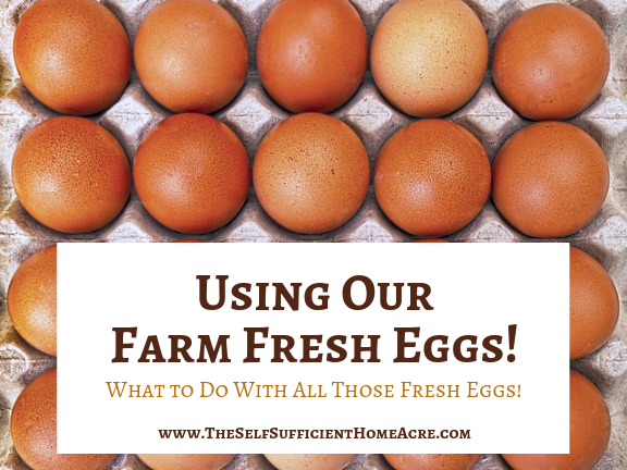 Using Our Farm Fresh Eggs!