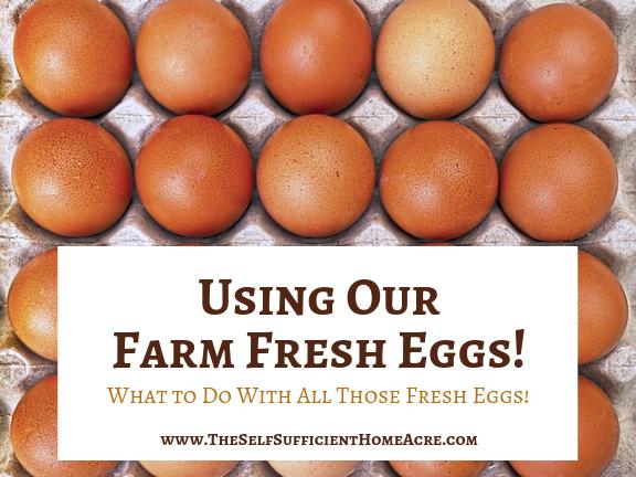 Using Our Farm Fresh Eggs
