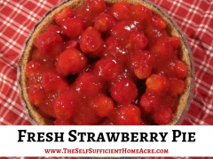 Fresh Strawberry Pie Easy Recipe - The Self Sufficient HomeAcre