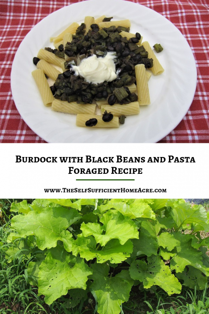 Burdock with Black Beans and Pasta - Foraged Recipe