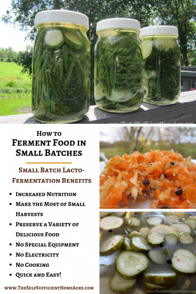 How to Ferment Food in Small Batches - The Self Sufficient HomeAcre