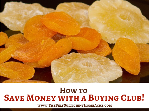 How to Save Money with a Buying Club