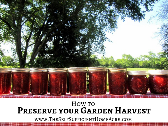 How to Preserve Your Garden Harvest