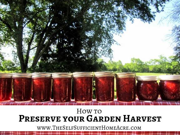 How to Preserve Your Garden Harvest