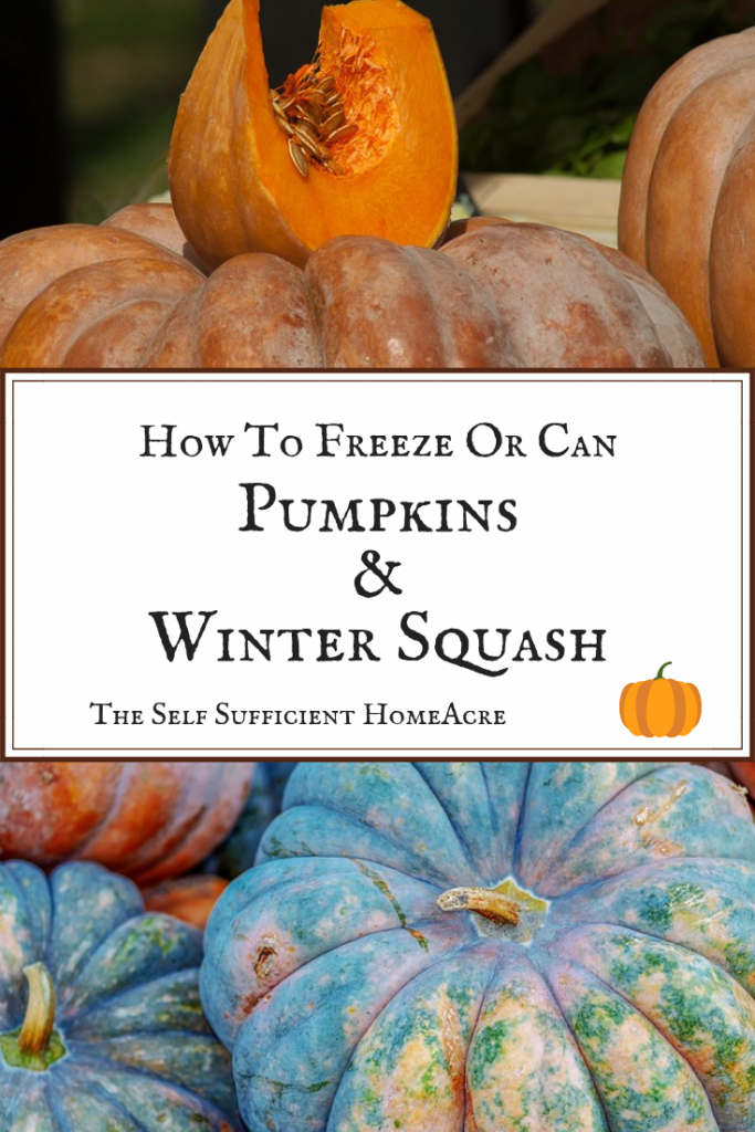 How to Freeze or Can Pumpkins and Winter Squash by The Self Sufficient HomeAcre