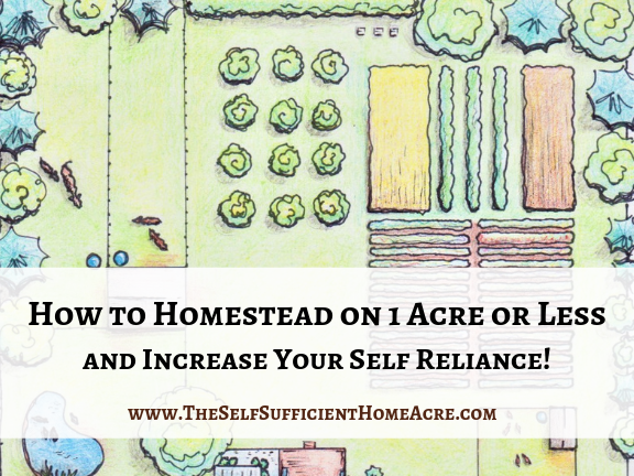 How to Homestead on 1 Acre or Less and Increase Your Self Reliance on Farm Fresh Tuesdays and a New Look for My Blog!