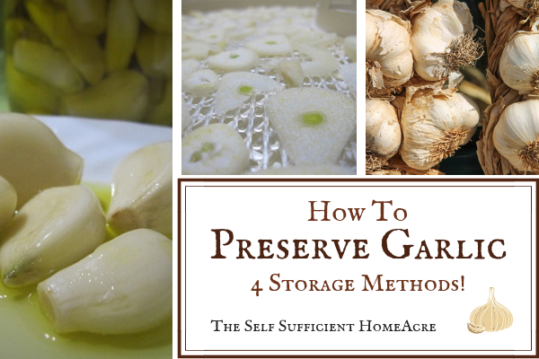 How to Preserve Garlic - 4 Easy Storage Methods by The Self Sufficient HomeAcre