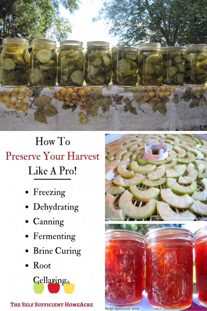 How to Preserve Your Harvest Like a Pro by The Self Sufficient HomeAcre