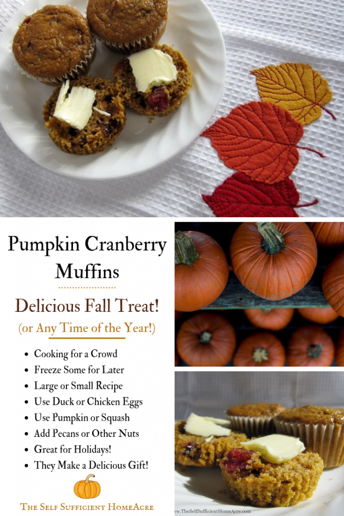 Pumpkin Cranberry Muffin Recipe by The Self Sufficient HomeAcre - These #PumpkinCranberryMuffins make a delicious #AutumnTreat and taste great any time of Year! #FallRecipes #Thanksgiving #Autumn