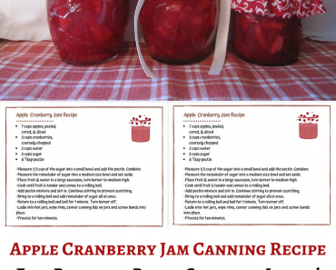 Apple Cranberry Jam Canning Recipe with Free Labels!