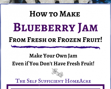How to make blueberry jam from fresh or frozen blueberries