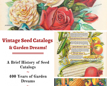 The Beautiful History of Gardening and Seed Catalogs