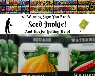 20 Warning Signs You're a Seed Junkie