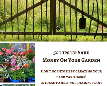 50 Tips to Save Money on Your Garden