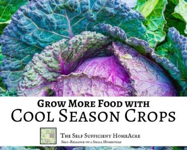 Grow More Food with Cool-Season Crops