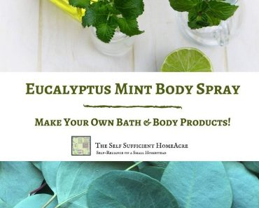 How to Make Cooling Eucalyptus Mint Body Spray