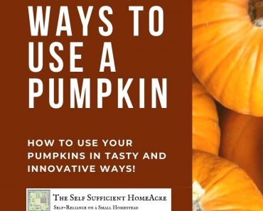 25 of the Best Ways to Use a Pumpkin